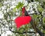 07_heart