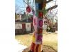 12_1686_Hope-Tree_2014